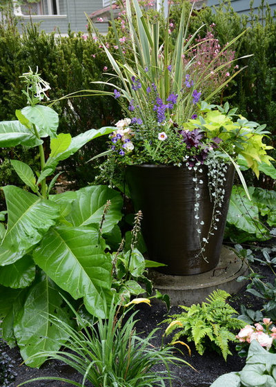 Traditional Garden by Glenna Partridge Garden Design