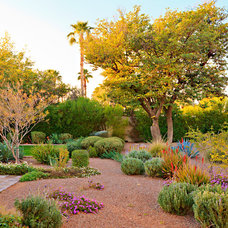 Mediterranean Landscape by Ecological Design Group, LLC