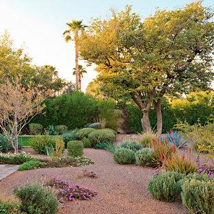 Mediterraner Kiesgarten hinter dem Haus mit direkter Sonneneinstrahlung in Phoenix