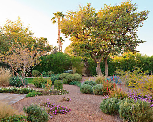 Desert Landscape Design Ideas desert landscaping ideas for garden with stairs made of beautiful garden of a house with cactus plants and some stone decors and sandy area for This Is An Example Of A Mediterranean Full Sun Backyard Xeriscape In Phoenix With Mulch