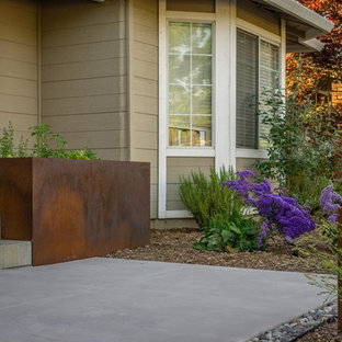 Photo of a mid-sized modern drought-tolerant front yard concrete paver landscaping in San Francisco.