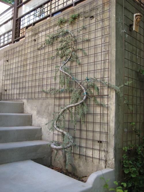 Wire Trellis Houzz