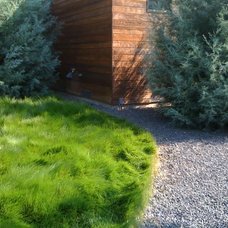 Contemporary Landscape by David Rolston Landscape Architects