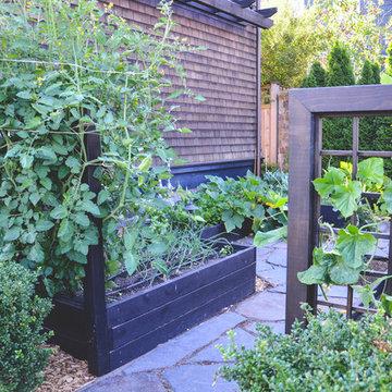 Capitol Hill Potager Garden