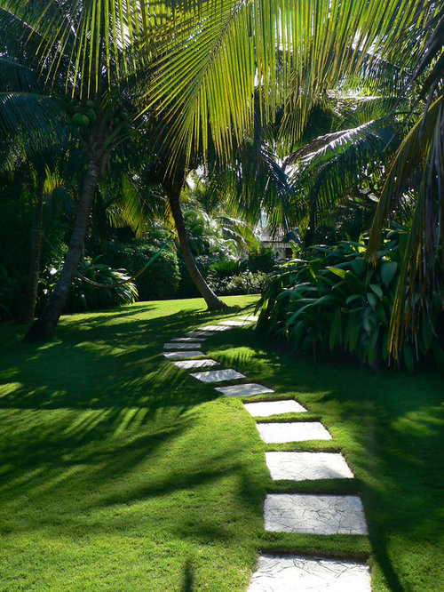 inspiration for a tropical shade landscaping in miami with a garden path and natural stone pavers