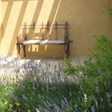 Mediterranean Landscape by Arterra LLP Landscape Architects
