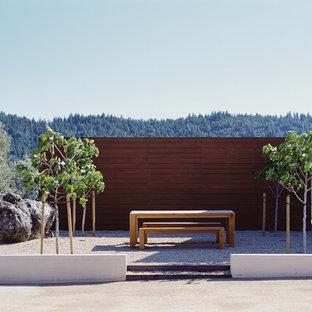 Design ideas for a modern gravel landscaping in San Francisco.