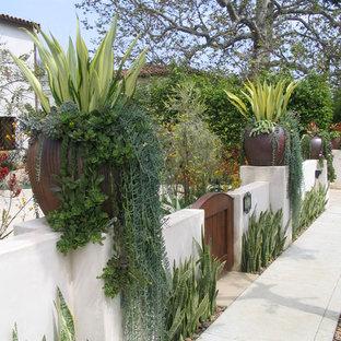 ロサンゼルスの地中海スタイルのおしゃれな前庭の写真