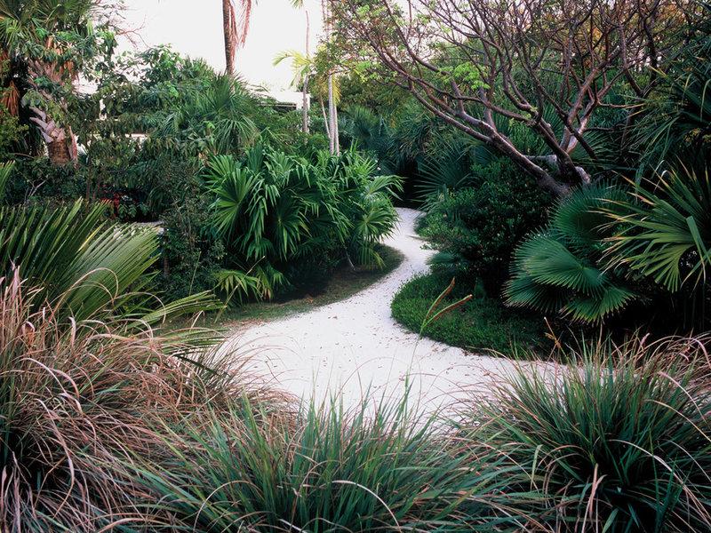 тропический пейзаж Раймондом джунглях, Inc