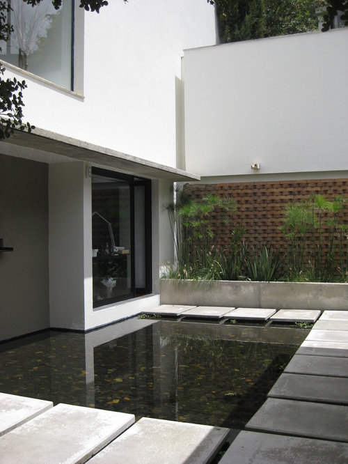 Best modern koi pond construction home design design ideas for Contemporary pond design