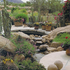 Mediterranean Landscape by Exteriors By Chad Robert