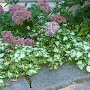 ニューヨークの大きい、秋のラスティックスタイルのおしゃれな裏庭 (ゼリスケープ、日向、天然石敷き、擁壁) の写真