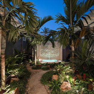 Idéer för en exotisk trädgård i delvis sol, med en fontän