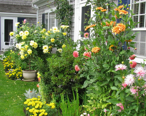 Image Result For Home And Garden Questionsa