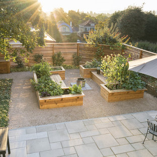 This is an example of a mid-sized transitional full sun backyard gravel vegetable garden landscape in Seattle.