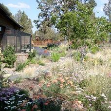 Contemporary Landscape by Heart Springs Landscape Design, LLC