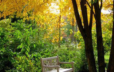 Es riecht nach Herbst! Verlockende Pflanzendüfte aus dem Garten