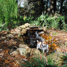 Traditional Landscape by Charleston Home + Design Mag
