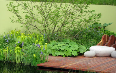 20 Ways to Create a Chartreuse Splash in the Landscape