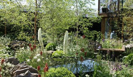 Insider Tricks for Creating the Chelsea Flower Show Garden Look