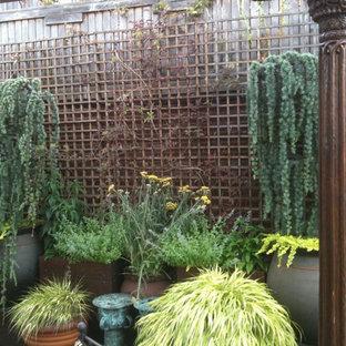 Ispirazione per un ampio giardino boho chic esposto in pieno sole sul tetto in primavera con un giardino in vaso e pavimentazioni in pietra naturale