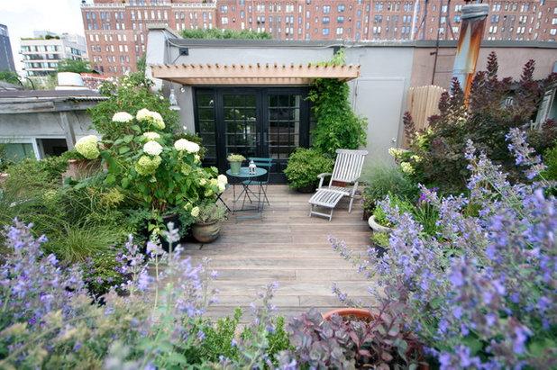 Contemporary Garden by BROOK LANDSCAPE
