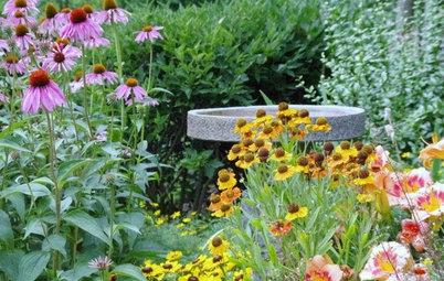 5 Invaluable Lessons From a Landscape Architect