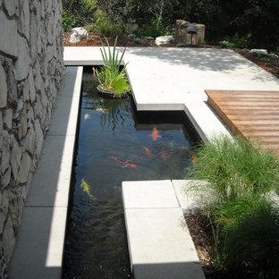 Diseño de jardín contemporáneo con fuente y entablado