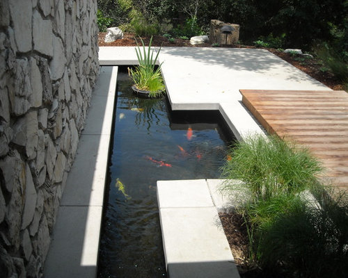 Fish pond home design ideas pictures remodel and decor