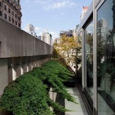 Contemporary Landscape by Sozo Landscape Design