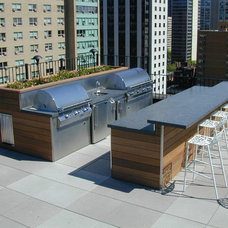 Modern Landscape by Chicago Green Design Inc.