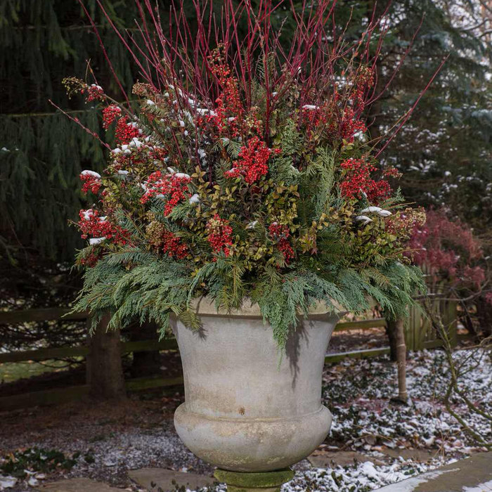 Urns outside Estate in Greenwich.  Hemlock, Red Twig Dogwood, Pine Cones, Cranberry Picks and Holly. Peter Atkins and Associates, LLC