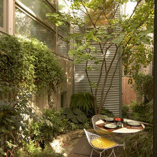 Modern Landscape by Burns and Beyerl Architects
