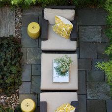 Modern Landscape by Michelle Miller Interiors