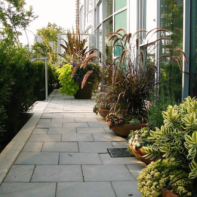 Photo of a contemporary landscaping in Vancouver.
