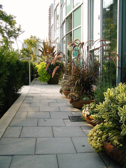 Small Patio Garden Design | Houzz