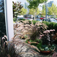 Contemporary Landscape by Glenna Partridge Garden Design