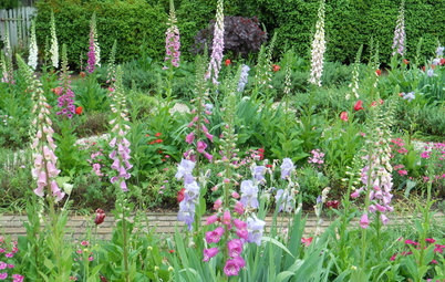 How to Create a Cottage-style Garden