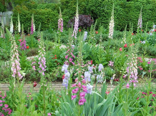 Classique Jardin by Paintbox Garden