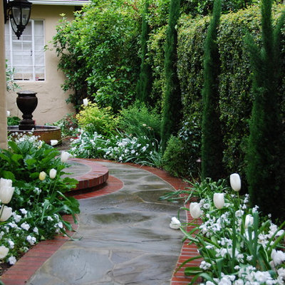 Design ideas for a traditional side yard landscaping in San Francisco.