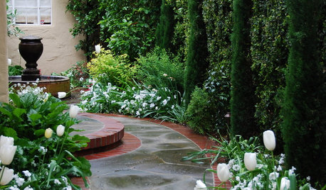 Creative Edges for Garden Borders and Paths