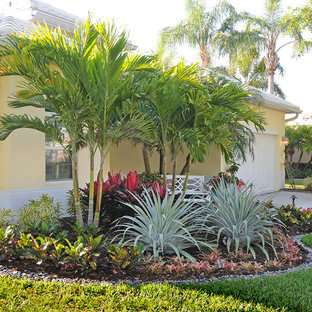 75 Most Popular Tropical Front Yard Landscaping Design Ideas For