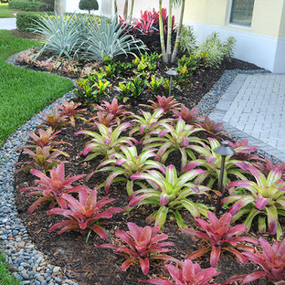 75 Beautiful Tropical Front Yard Landscaping Pictures & Ideas - January, 2021 | Houzz