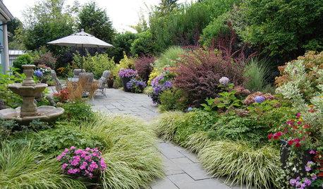 庭をよく観察しながら梅雨を乗り切ろう!【6月のガーデニング】