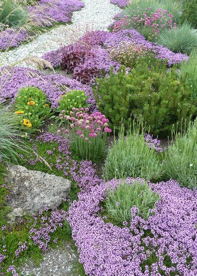 Classico Giardino by Lankford Associates Landscape Architects
