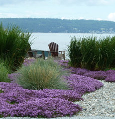 contemporary landscape by Lankford Associates Landscape Architects