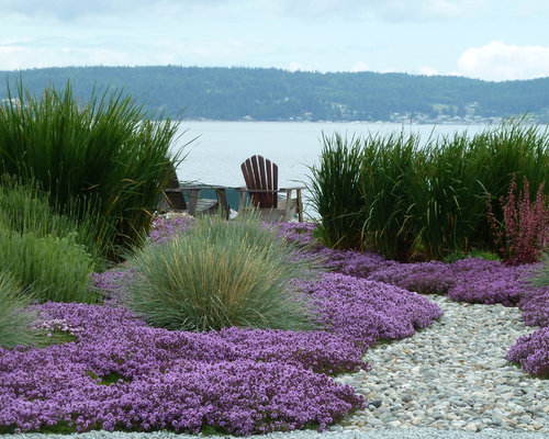 Beach style landscape ideas designs remodels photos for Beach garden designs