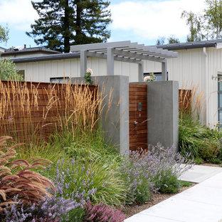 Design ideas for a rural full sun garden in San Francisco.