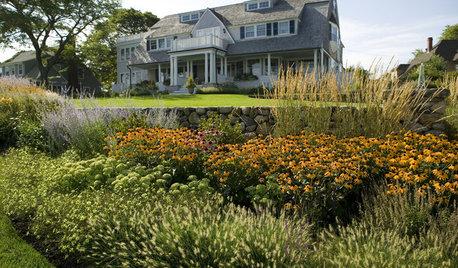 11 der schönsten robusten, winterharten Gräser für den Garten