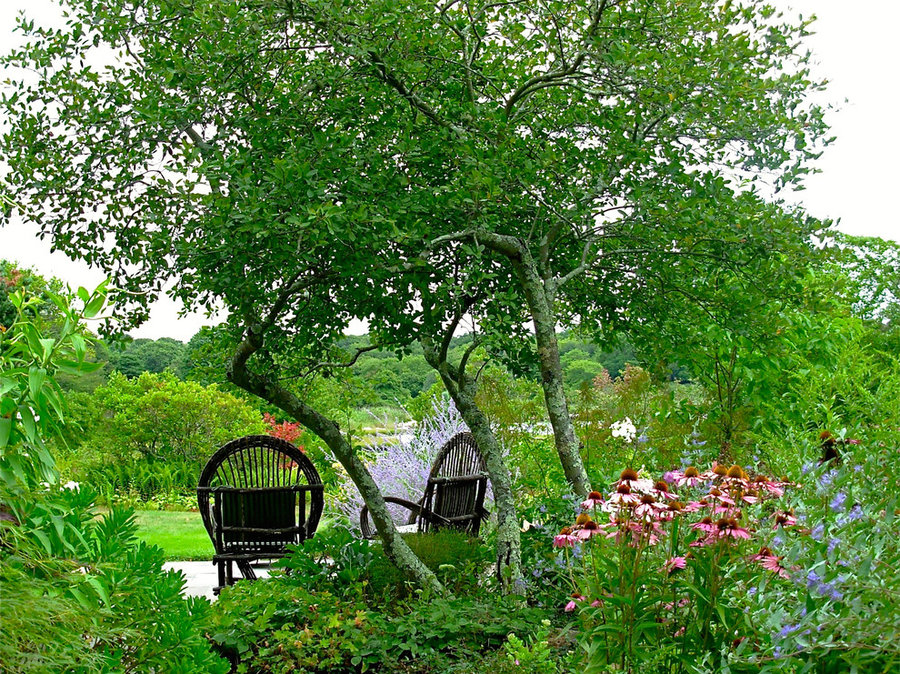 Coastal Rhode Island Garden: Salt Pond Friendly